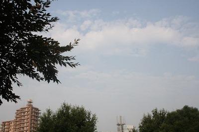 Img_5431