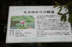 2008_09_18_037_2